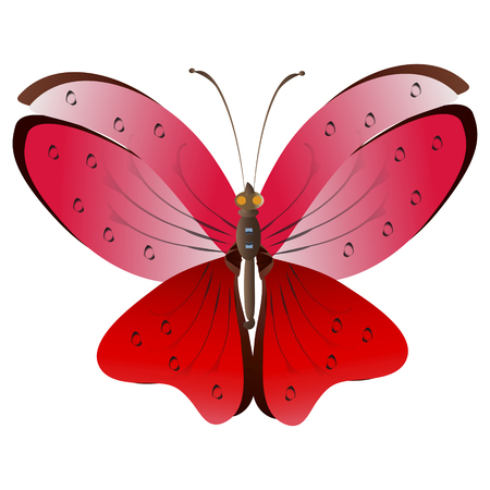beautiful red butterflies, isolated on a white Иллюстрация