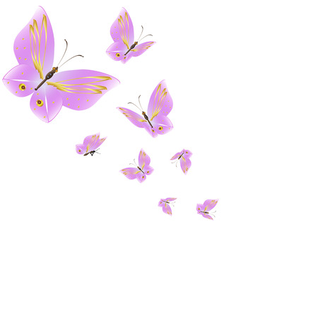 beautiful pink butterflies,isolated on a white Illusztráció