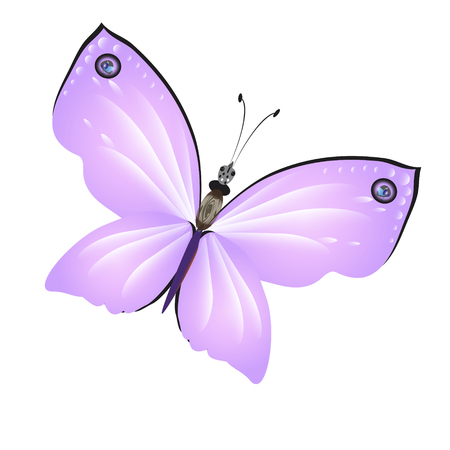 beautiful pink butterflies,isolated on a white Ilustrace