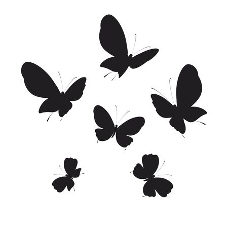 silhouette,beautiful butterflies, isolated on a white Ilustracja