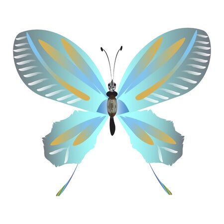 beautiful butterflies, blue,isolated on a white Ilustrace