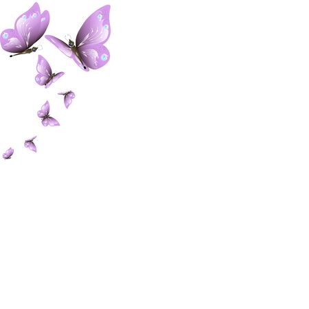 beautiful pink butterflies,isolated on a white Archivio Fotografico - 138439744