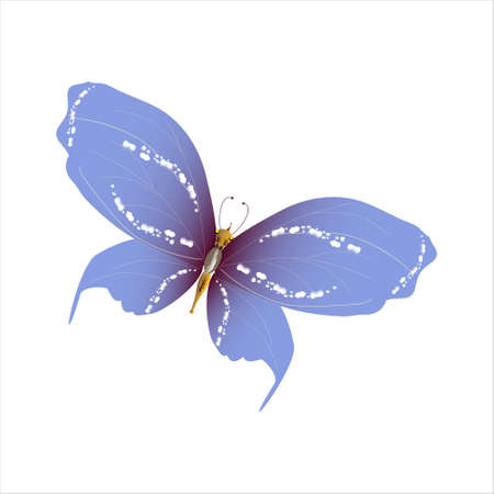 beautiful butterflies, blue,isolated on a white Ilustração