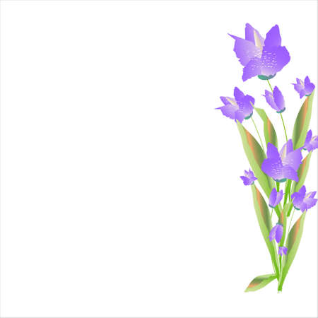 beautiful color flowers, isolated on a white Vettoriali