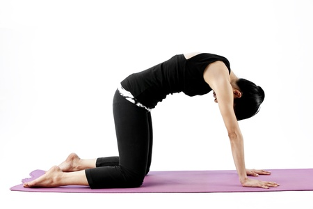 Asian female practising yoga in cat position Stock Photo - 21799097