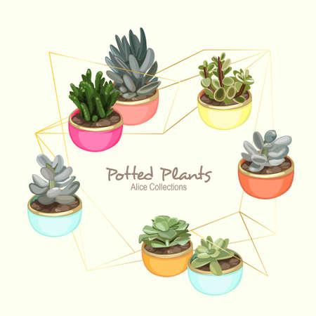 Colorful Potted Plants Vektorové ilustrace