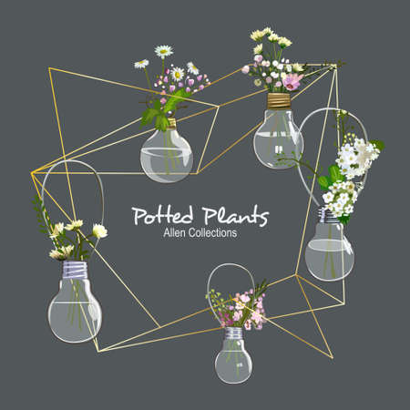 Geometric Frame with Bulb Potted Plants