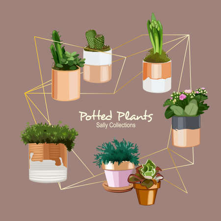 Various white and gold foil accent potted plant Illustration