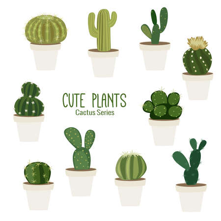Cute cactus series with colorful and fun personality of each to brighten up your design Illustration