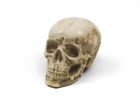 Conceptual sculpture of a human skull Stock Photo - 13109506