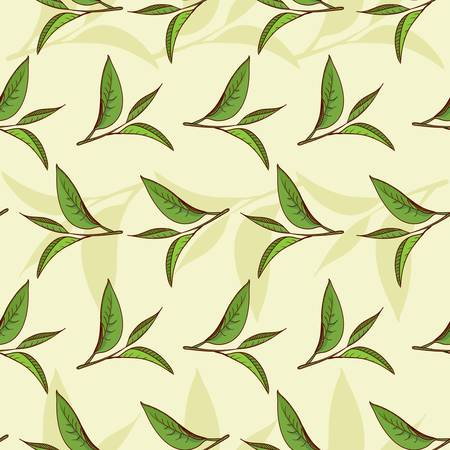 olive green: Seamless pattern illustrated nature, tea leaves and high-vitamin diet  Illustration