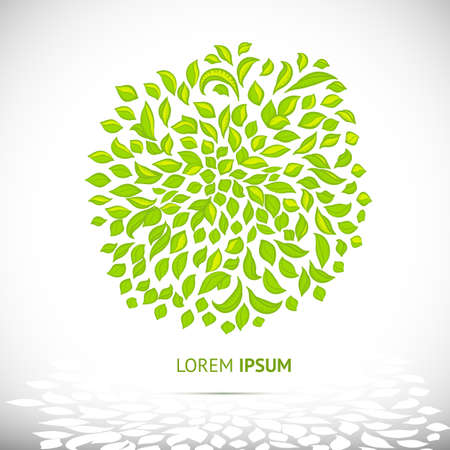 Symbol of nature, organic and health. Green with leaves. Vector elements for design. Vector