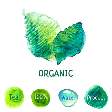 Watercolor vector nature concept  Organic product label  Green tea  100  eco friendly  Clear water  Bio illustration  Vector