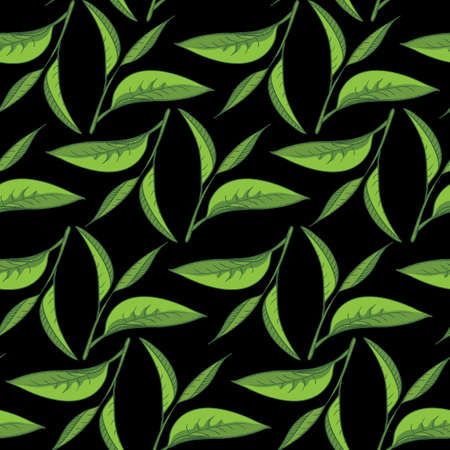Seamless pattern illustrated nature, tea leaves. High quality tea drawing design elements.