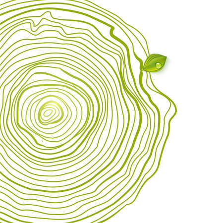 葉の自然な木製の円。  イラスト・ベクター素材