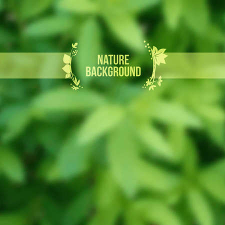 nature background with blurred summer leaves.  일러스트