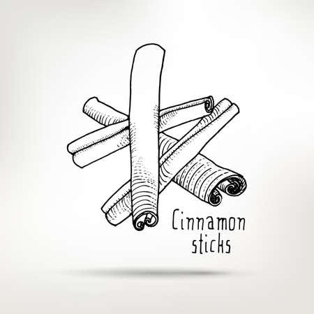 cinnamon sticks: Cinnamon sticks ink drawing. healthy food illustration.  Vintage style element for menu design. Illustration