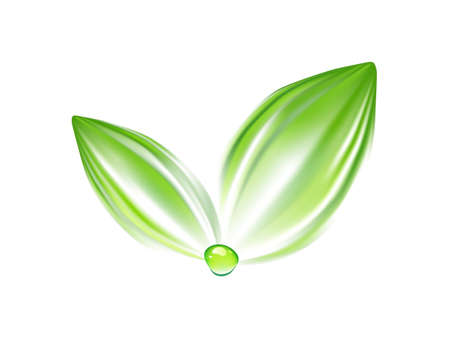 comunication: Green leaves with water drop logo.