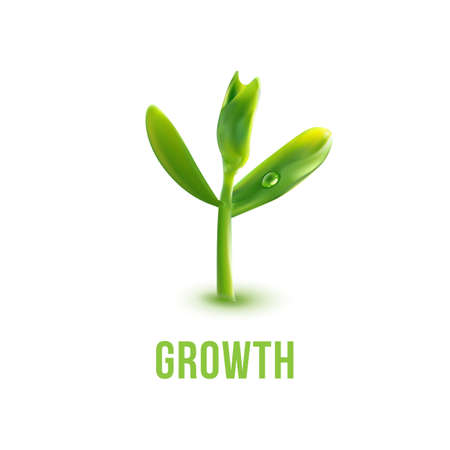 new plant: Green plant with growth slogan. Agriculture, ecology, new life and spring concept. Save green idea.