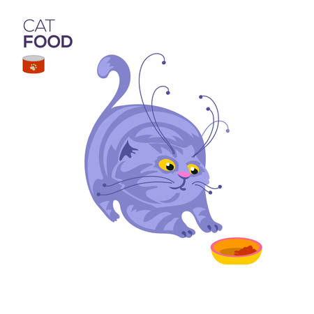 animals feeding: Cat with a bowl of dry cat food and looking in to it.