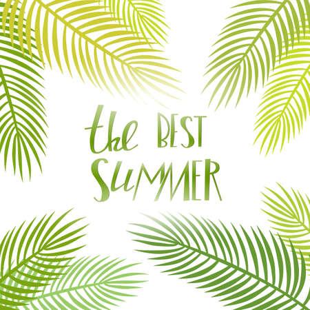 夏日光。传染媒介与棕榈叶和字法的季节海报。热带背景