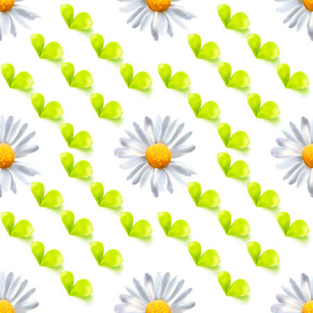 Seamless pattern with leaves and chamomile Illustration