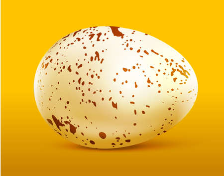 Quail egg with spots on yellow.