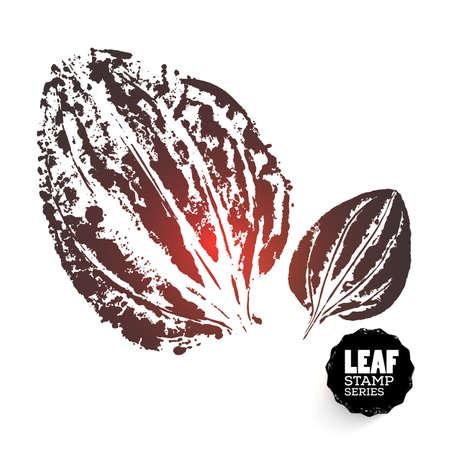 Vector design template. Ink splashes element. Plantainleaf print. Hand made Ink stamp of a leaf. Seasons changing.