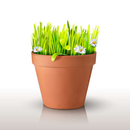 Grass and chamomile in a clay peat pot isolated on white background. Realistic mesh design. Vector illustration. Season symbol object.