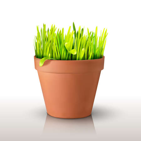Grass in a clay peat pot isolated on white background. Realistic mesh design. Vector illustration. Season symbol object. Иллюстрация
