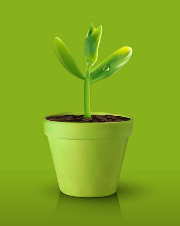 Single green sprout on green