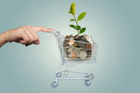 Hand with Shopping cart of money Stock Photo