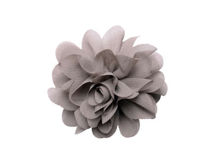 gray artificial flower isolated on white background photo