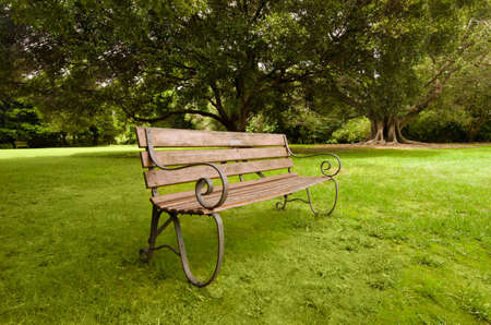 lonely bench on a green lawn  Sydney, Royal Botanic Garden photo