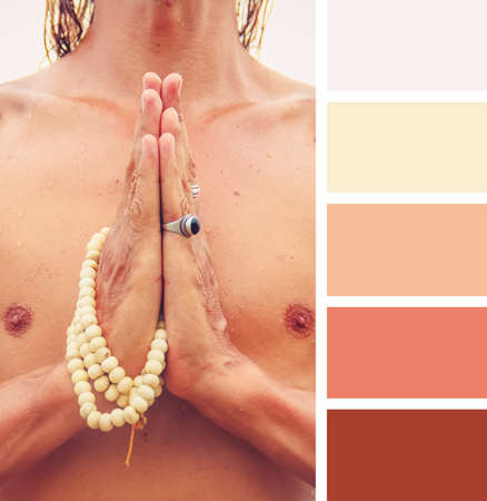 hues: hand sign namaste  colour palette swatches. pastel hues
