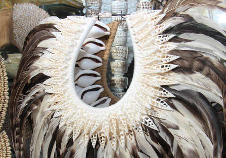 art and craft: costume made of shells and feathers