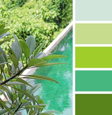 hues: wedding Accessories. color palette swatches. pastel hues