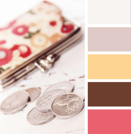 silver coins: silver coins and wallet on a white background wooden.  colour palette swatches, pastel hues Stock Photo