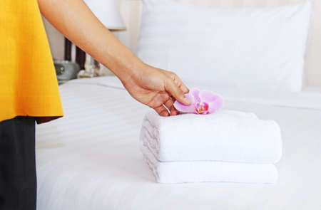 orchid house: cleaning in a hotel room