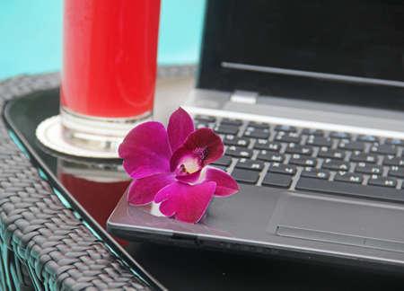 watermelon juice: Black laptop and watermelon juice poolside
