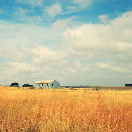 old farm: old farm in the field