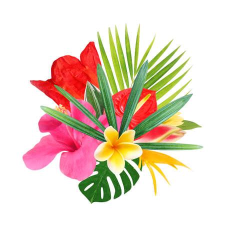 tropische bloemen op een witte achtergrond Stockfoto