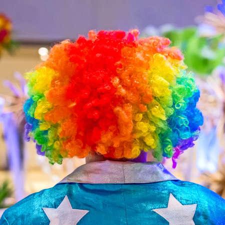 Beautiful multicolored wig photo