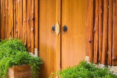 Thailand door with door knockers in the shape of a lion.