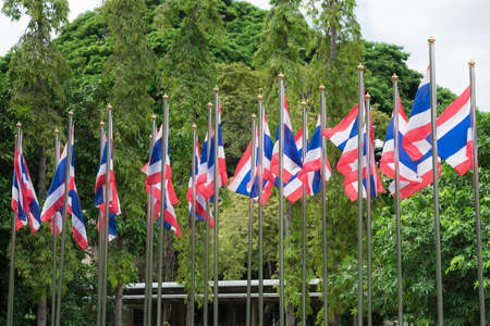 A group of Thai nation flags in a park.