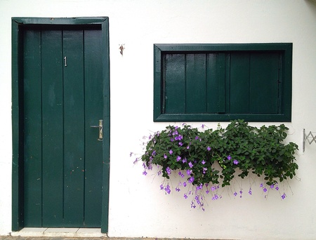 Green door and window with foliage and purple flowers