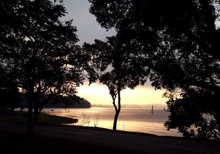 Golden light reflected on lake