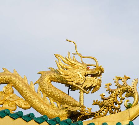 Golden dragon on top with white background  Stock Photo - 17304017