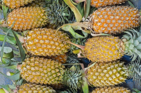 Pineapple ready to sale in the market