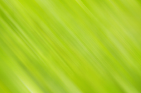 The abstract color blur is design for ideas and others.